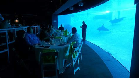 themed events n more corpus christi high touch technologies texas state aquarium event in