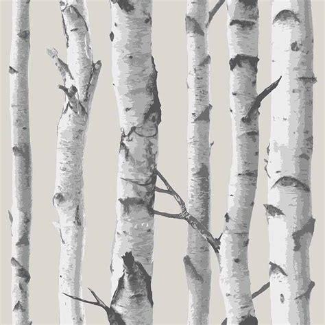 peel stick wallpaper birch tree peel and stick nuwallpaper rosenberryrooms com