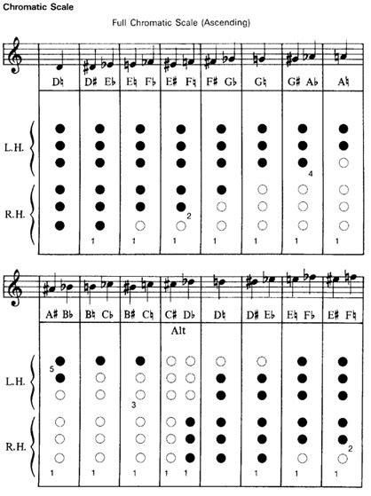 soldan roben illustrated flute robin soldan jeanie mellersh pdf
