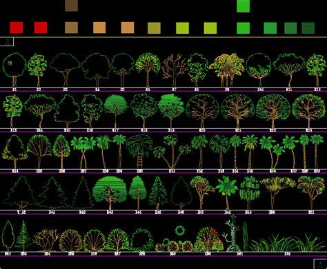 trees  shrubs  dwg elevation  autocad designs cad