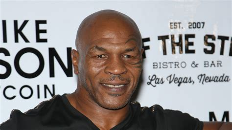 300 Square Foot Apartment by Former Boxing Champ Mike Tyson Scores 2 5m Home In