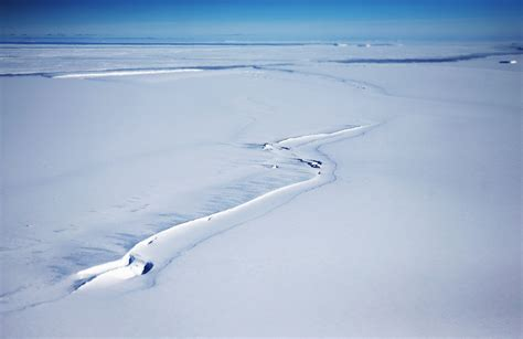 What Is The Largest Shelf In Antarctica by Antarctica Is About To Lose An Shelf The Size Of