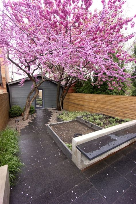 small backyard no grass small backyard ideas no grass add value to your home