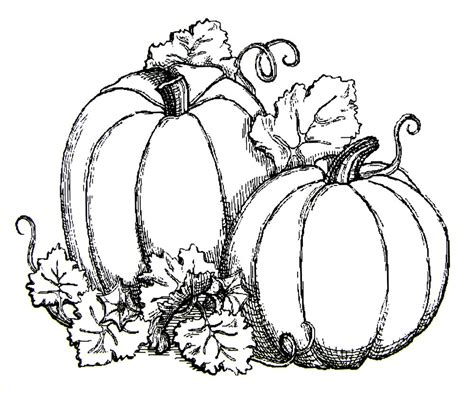 October Printable Coloring Pages Holidays And Observances October Coloring Pages Printable