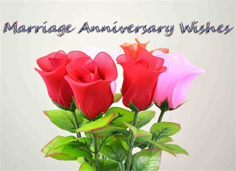 Wishes Happy Anniversary saying hd wallpaper with roses
