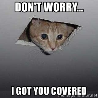 You Got This Meme - don t worry i got you covered ceiling cat meme