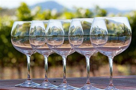 Where To Buy Barware by Wine Glasses Bargain Style And Where To Buy Wine