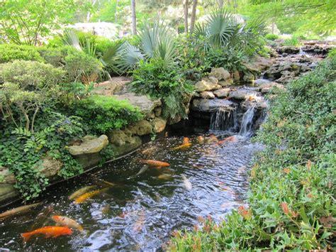 Japanese Botanical Gardens Fort Worth Botanic Garden Fort Worth Koi Pond At Japanese Garden Places I Been