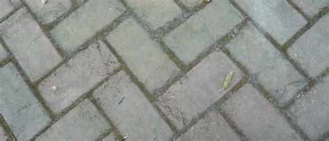 Gray Brick Pavers Brick