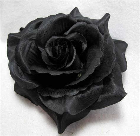 black flower black rose flower pictures to pin on pinterest pinsdaddy