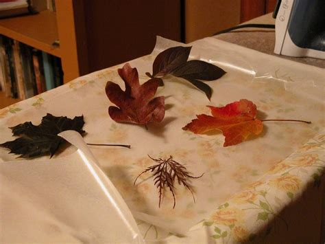 How To Make Wax Paper Leaves - wax paper leaves play with me by ets