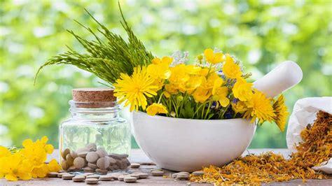 Obat Herbal Segala Jenis Penyakit obat herbal untuk penyakit kanker darah