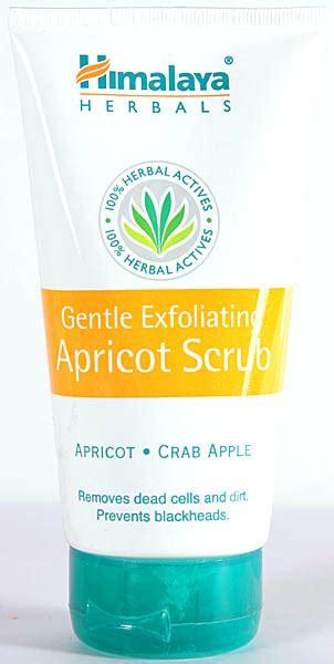 Gentle Exfoliating Scrub Jafra gentle exfoliating apricot scrub