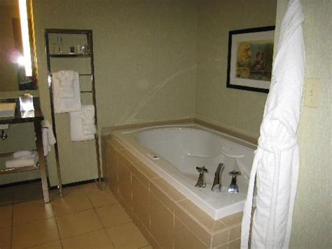 hotels with jacuzzi bathtubs redd foxx suite picture of moonrise hotel saint louis