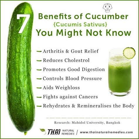benefits of cucumber benefits of cucumber vegetables