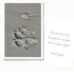 sympathy cards for loss of or cat speak cards gifts