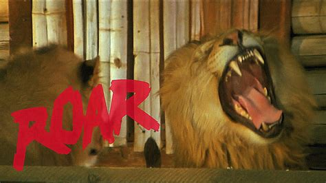 film lion roar roar see the movie about a brainsick family living