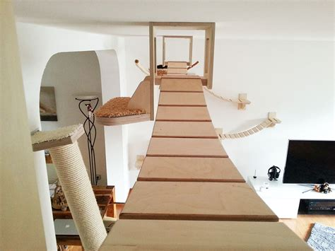 cat room rooms turned into cat playgrounds by goldtatze