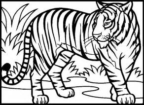 Tiger Coloring Pages And Book Uniquecoloringpages