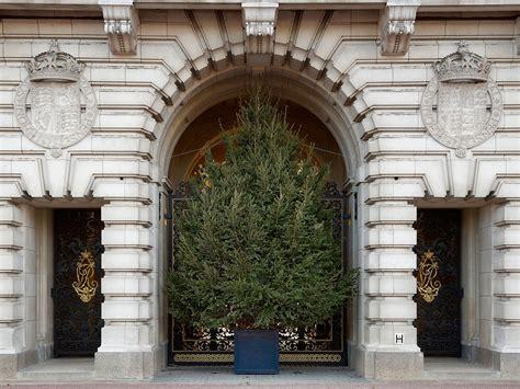 christmas tree  buckingham palace  christmas tree
