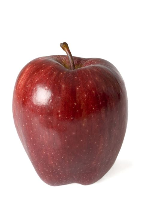 apple australia red delicious photo of glossy red delicious apple on