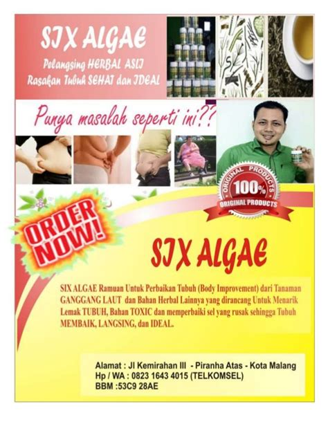Pelangsing Herbal Organik 62823 1643 4015 telkomsel pelangsing six algae