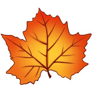 Google Images Fall Leaves | autumn leaves live wallpaper android apps on google play