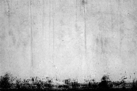 white wall pictures texture of white wall with black edge photo free