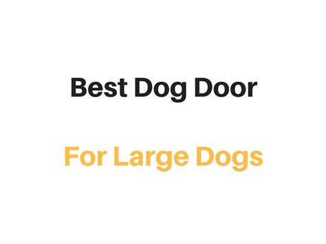 doggie doors for large dogs best door for large dogs reviews buyer s guide