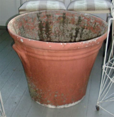 Flower Planters For Sale by Large Planter Pots For Sale Gallery Of Lucca Terracotta
