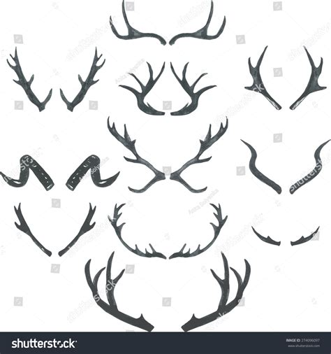 watercolor hand drawing deer antlers set stock vector