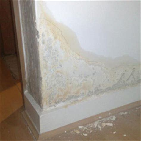 reduce condensation in bedroom anti condensation paint anti d product guide