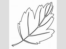 Feuille d'arbre | Zosia | Leaf silhouette, Embroidery leaf ... Japanese Maple Leaf Drawing