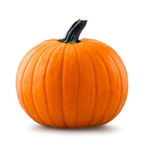 image of pumpkin up your routine with pumpkin diy pumpkin