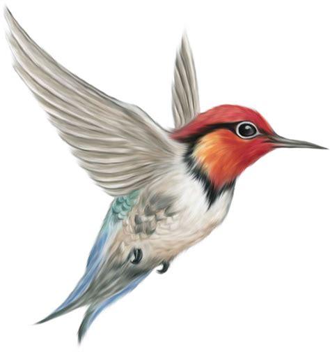 ubah format gambar png ke jpg 14 gambar lukisan burung seni rupa