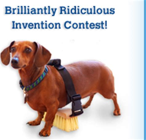 invention contest invention contest for connecticut invents