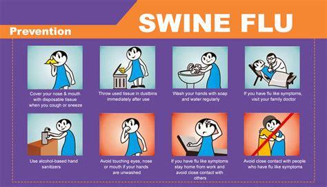 swing flu swine flu bing images
