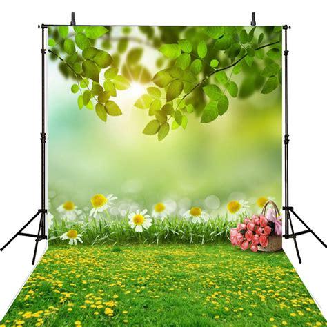 hot spring photography backdrop scenic vinyl backdrop