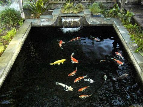 Ordinary Bassin De Jardin Avec Jet D Eau #5: Fontaine-pour-bassin-petite-piscine-avec-poissons.jpg