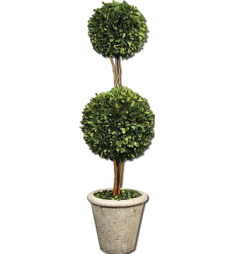 topiary sphere uttermost 60106 two sphere topiary preserved boxwood