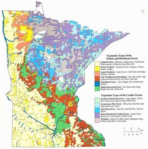 minnesota prairie restoration restoring native prairie