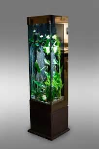 acheter aquarium acheter aquarium design poisson naturel