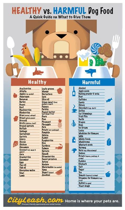 is human food bad for dogs healthy and harmful foods poster cityleash doxie for