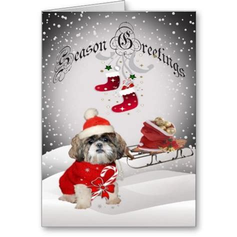 shih tzu cards 17 best images about shih tzu cards on seasons snow and