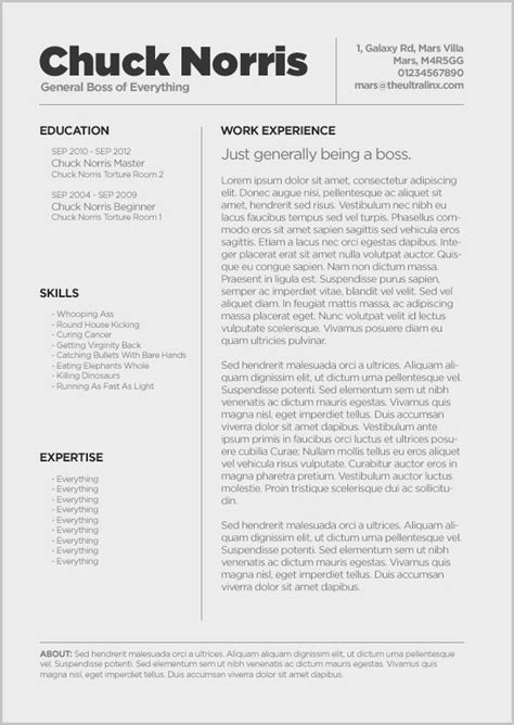 Air Resume Template by Delighted Free Resume Templates For Macbook Air Pictures
