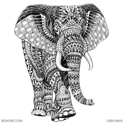 pattern elephant head drawing 06c437 13c87906c2f3c349438c982df377d952 jpg