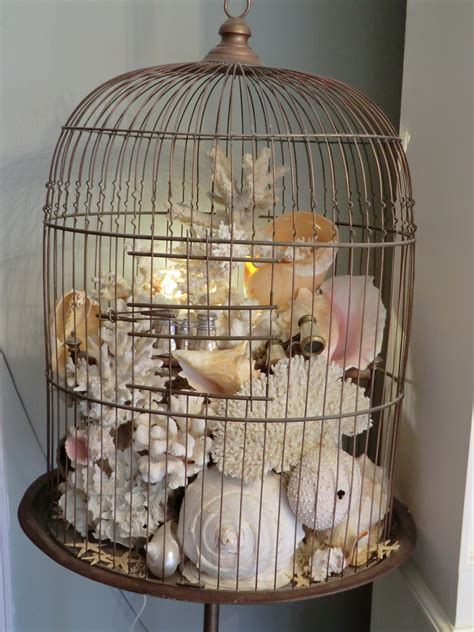 birdcage home decor old sea shells coral moss and ivy