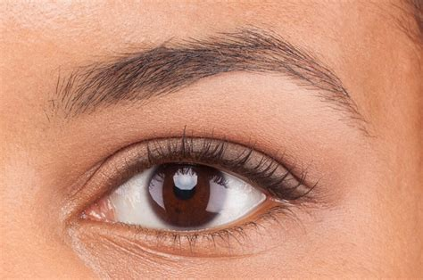 tattoo eyebrows oldham tips to tweeze eyebrows painlessly trusper