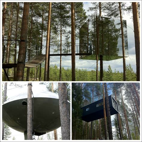 suspended swedish tree hotel reflects natural environment 5 glamorous cing destinations around the world