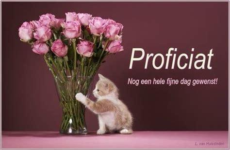 bosje bloemen plaatjes plaatje gefeliciteerd 187 animaatjes nl